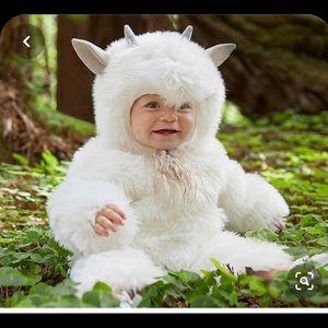 Potter Barn Kids Goat Costume 0-6 Months